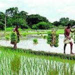 MSPs for Kharif Crops increased, repayment date of short term loans for agriculture by banks also extended